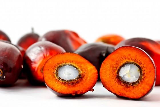 L'olio di Palma presenta bassissime quantità di 3-MCPD