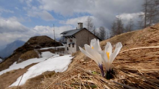 In arrivo un anticipo di Primavera sul Fvg (© Parco Prealpi Giulie)