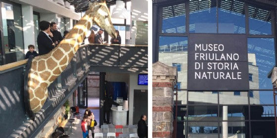 Nuova sede per il Museo friulano di Storia naturale (© Diario di Udine)