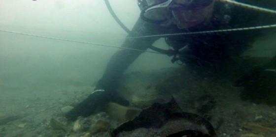 Una delle indagini dell'Università nel fiume Stella (© UniUd)