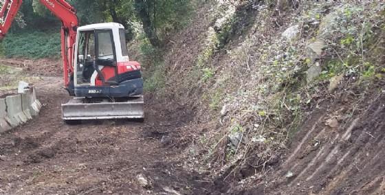 Gli operai forestali della Regione sono in agitazione (© Diario di Udine)