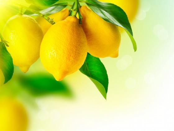 Limone per l'acido urico