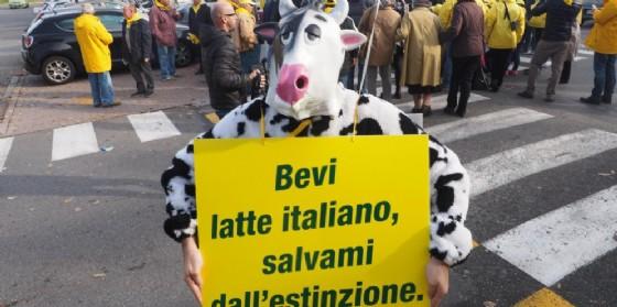 Un momento della protesta del novembre 2015 della Coldiretti.