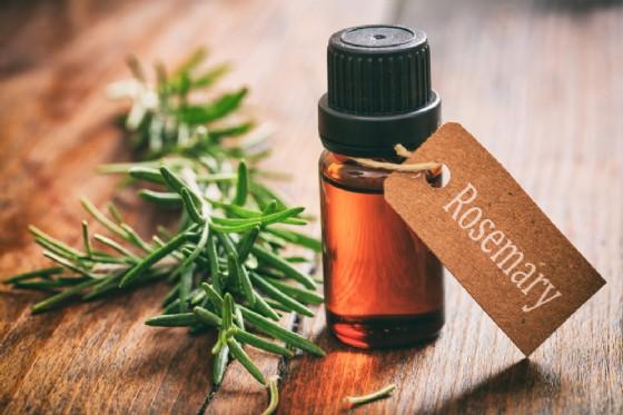 Olio essenziale di rosmarino e memoria (© Rawf8 | Shutterstock)
