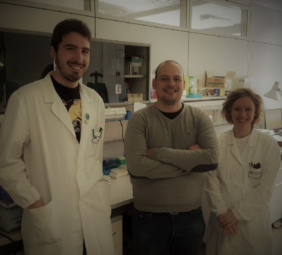 Pazienti affetti da leucemia refrattari alle terapie: la scoperta del Cro