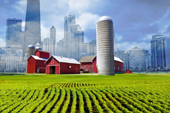 L'innovazione che parte dal territorio (© Credit of courtesy by Adobe Stock)