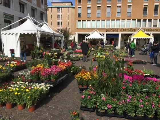 """""""Pasqua in città. Udine in fiore"""", la manifestazione dedicata alle piante e alle uova pasquali (© Pasqua in città Udine in fiore)"""