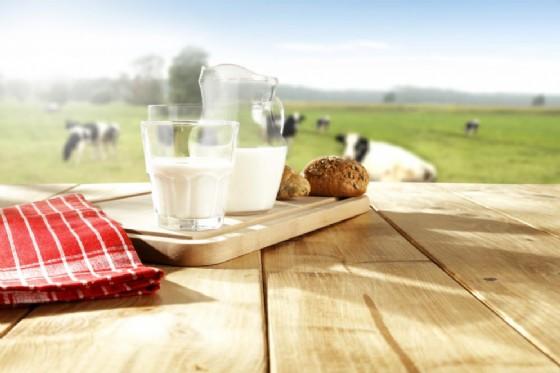 Indicare in etichetta il Paese di origine del latte sarà d'obbligo dal 19 aprile (© S_Photo | shutterstock.com)