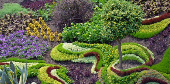 Riapre l'Orto Botanico di via Bariglaria (© AdobeStock | perlphoto)