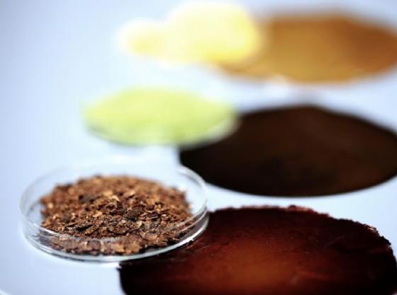 Smart materials: il packaging 'bio' fatto con gli scarti del cibo
