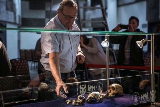 Dr Peter Schmid from The University of Zurich prepares «Neo», one the most complete hominid fossils ever discovered - technically even more complete than the famous Lucy fossil