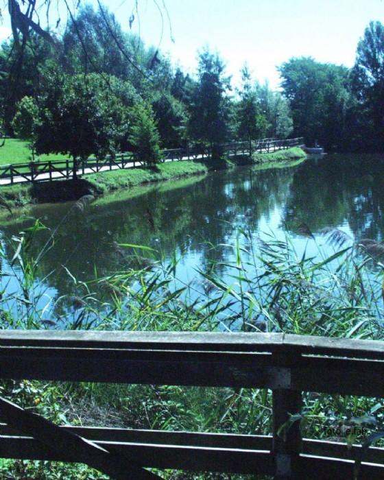 Rorai grande, avviato l'iter per le opere anti allagamenti: l'acqua verrà convogliata ai laghetti di Rorai attraverso diversi 'percorsi' (© Comune di Pordenone)