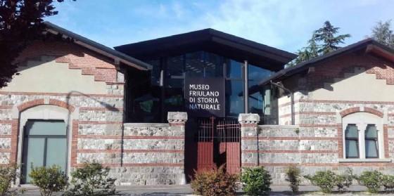 È aperta al pubblico da questo mese la biblioteca del Museo Friulano di Storia Naturale (© Comune di Udine)