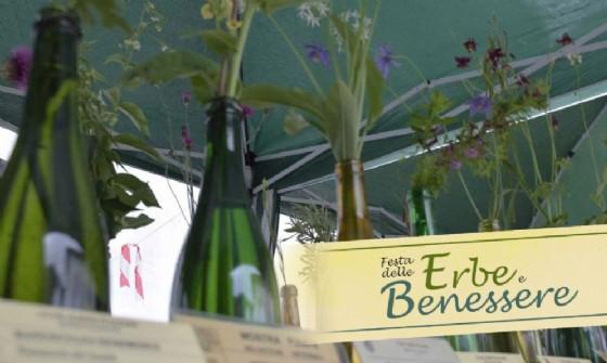 Festa delle erbe e del benessere nelle piazze di Tramonti di Sopra (© Pro Loco Tramonti di Sopra)
