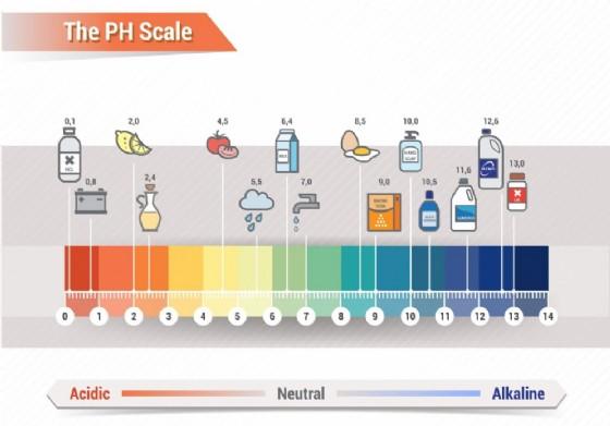 Il grado di pH di alimenti e sostanze di uso comune
