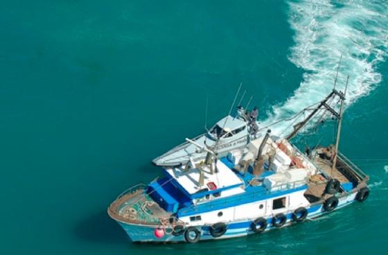Pescherecci sorpresi a pescare illegalmente: multati dalle Fiamme Gialle