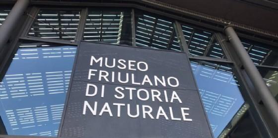 +12% di visitatori e +22% di incassi per i musei cittadini (© Civici Musei Udine)