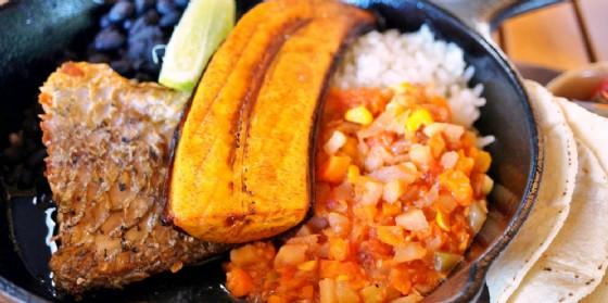 'Gusta la foresta': cena Costa Rica cambia location  epropone un menu da 'leccarsi I baffi' (© Shutterstock.com)