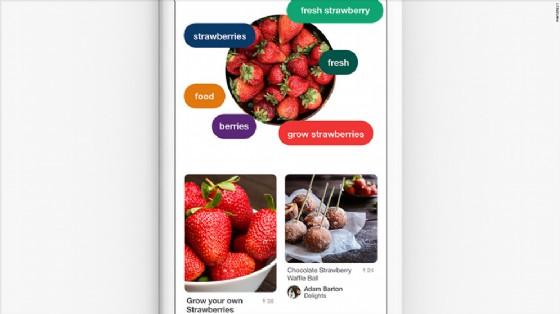 Pinterest Lens, guarda il piatto e scopri la ricetta
