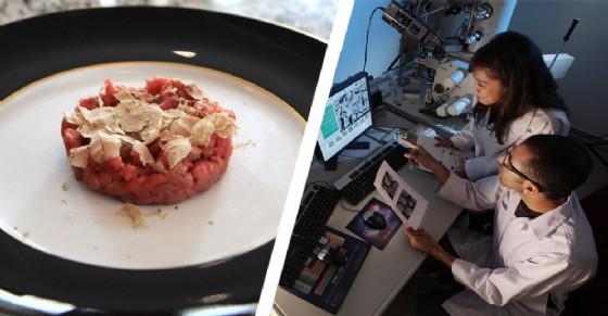 Al fine di accertare la qualità della carne cruda piemontese sono stati prelevati 167 campioni provenienti da macellerie di tutto il territorio (© Google)