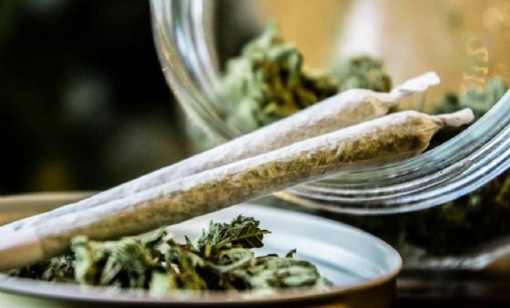 Spinelli o Joints illegali diventeranno un vecchio ricordo? La marijuana legale è già un successo