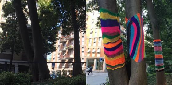 Rubate le 'coperte colorate' che abbellivano gli alberi di 'Villaggio dei Pecile'
