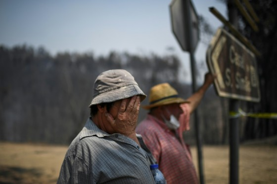 Farmers Luisilda Malheiro and her husband Eduardo Abreu escaped the hell on route 236, but they are still in shock: they lost several neighbours who had tried to escape