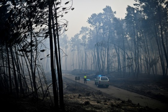 A police officer stands by a covered body, one of over 60 victims of Portugal's wildfires, many killed while fleeing in their cars