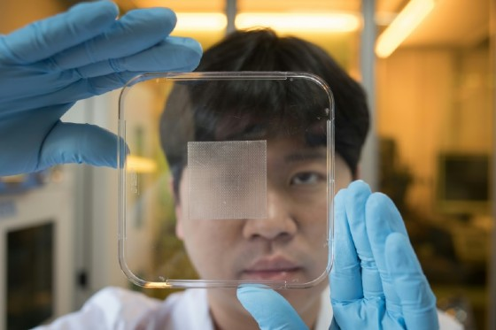 """The new """"wet-tolerant"""" adhesive patch has been hailed as a breakthrough by the country's science and technology ministry and there are hopes it will be able to be used for everything from heavy industry to dressing wounds"""