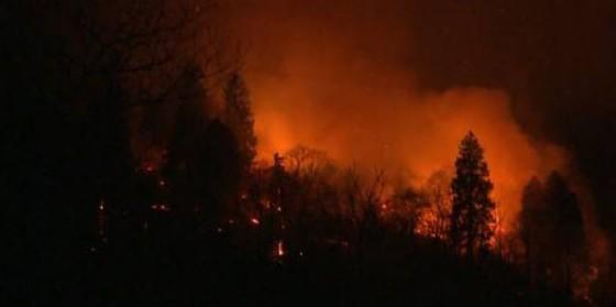 Nelle operazioni di spegnimento delle fiamme sono impegnati circa 250 pompieri