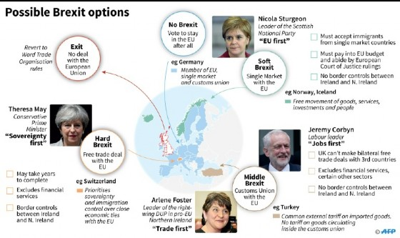 Possible Brexit options
