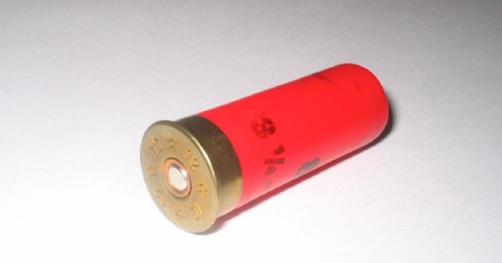 Immagine di repertorio di una pallottola calibro 12