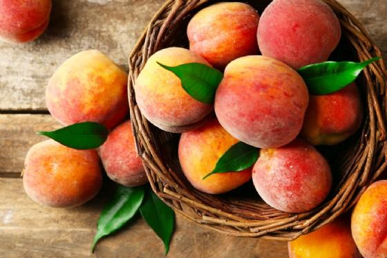 A Maglione la  Sagra delle Pesche (© Shutterstock.com)