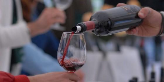 Turismo: al via i corsi per gli operatori di 'Vino e Sapori Fvg' (© Movimento Turismo del Vino)