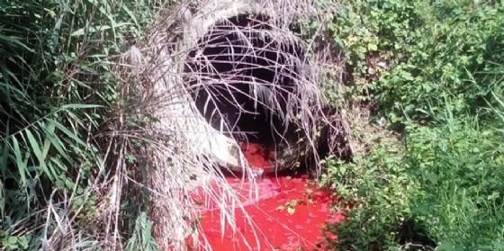 Arpa, pigmenti colorati nelle acque di scarico di Azzano Decimo