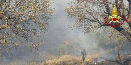 Brucia sulle alture di Arenzano, domato il rogo del Pizzo, Canadair
