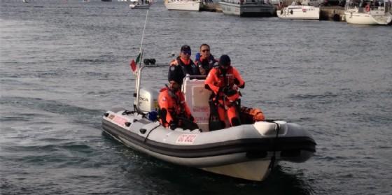 Cade sulla costa di Trieste e viene soccorsa da un gommone della Capitaneria di Porto (© Guardia Costiera)