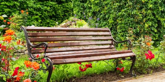 Una panchina in un giardino pubblico (© Shutterstock.com)