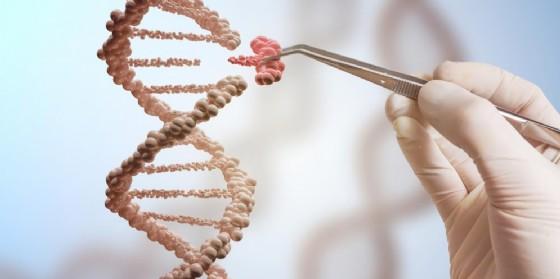CRISPR e Dna, nuove straordinarie applicazioni