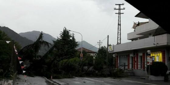 Maltempo: grandine, alberi caduti e temperature che arrivano a 16 gradi