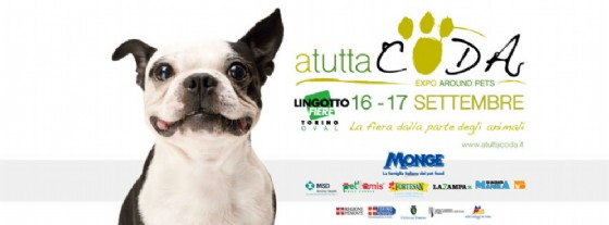 Al Lingotto «A Tutta Coda – Expo around Pets» (© «A Tutta Coda – Expo around Pets»)