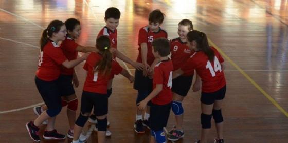 Pordenone Volley: al via le iscrizioni per l'inizio dei corsi (© Insieme per Pordenone Volley)