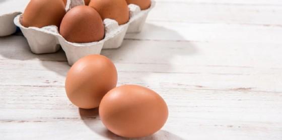 Uova contaminate da Fipronil