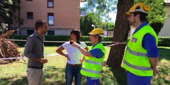 """Maltempo, Serracchiani: """"A Udine danni ingenti ma interventi immediati"""" (© Regione Friuli Venezia Giulia)"""