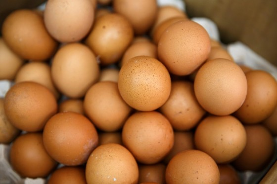 The insecticide fipronil has now been discovered in eggs in 17 European countries since the scandal came to light at the start of August, and was even found as far away as Hong Kong