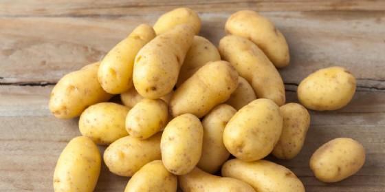 Fipronil, ora tocca anche alle patate e alla pasta