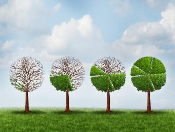 Sostenibile e Green, è boom di invenzioni Made in Italy (siamo quarti in UE)