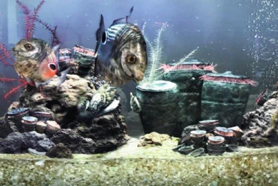 La perfetta ricostruzione in 3D dell'ambiente marino di 100 milioni di anni fa (© Polo Museale del Fvg)