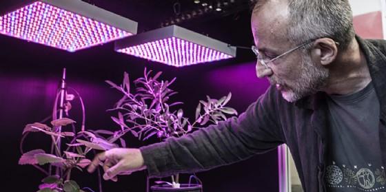 Sostenibilità a Pordenonelegge: con Aboca in scena il neurobiologo delle piante (© Fondazione Pordenonelegge)