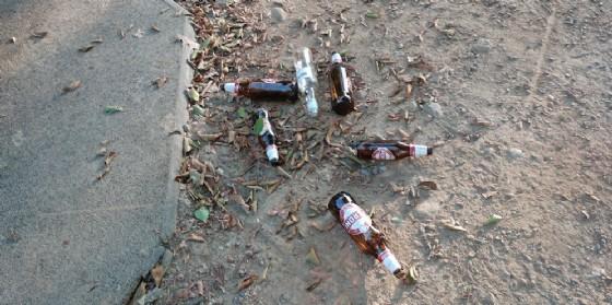 Bottiglie abbandonate nell'area giochi (© Diario di Biella)